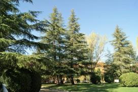 Jardineria Madrid