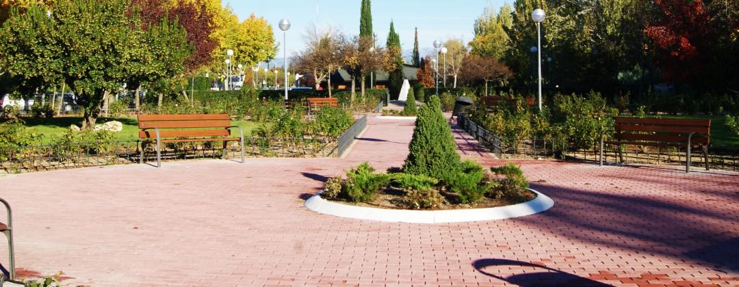 Mantenimiento de jardin en Madrid
